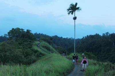 Jogging Track di Bukit Campuhan, Bali